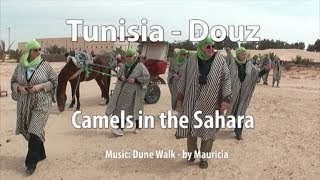Douz Tunisia  city photos : A camel ride at Douz, Tunisia, in the Sahara desert