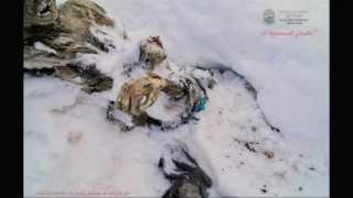 Video Deux alpinistes congelés retrouvés 55 ans après leur disparition au Mexique MP3, 3GP, MP4, WEBM, AVI, FLV Juni 2017
