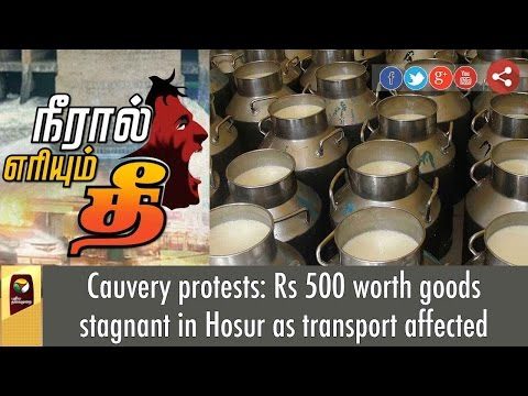 Tamil-Nadu-to-face-60%-milk-shortage-on-Sept-16-due-to-bandh