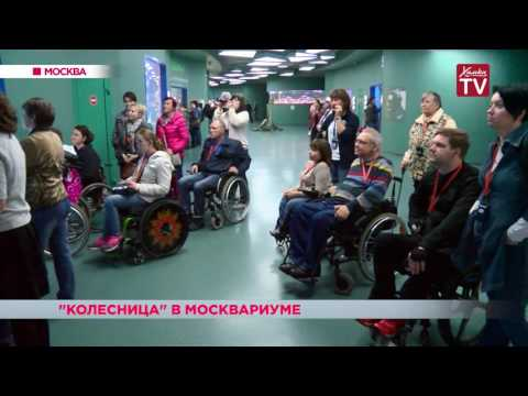 Представители общественной организации «Колесница» посетили Москвариум (видео)