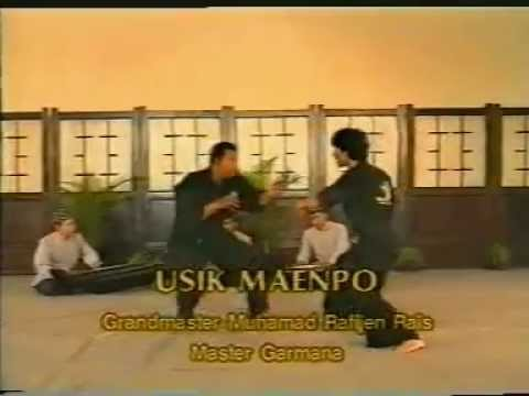 Silat Fighter Maenpo