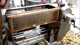 Kettering Australia  city photo : Honey extracting process