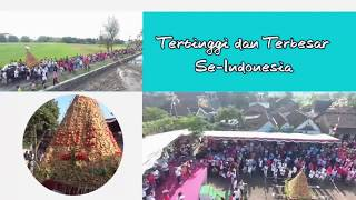 Video Ribuan warga Kirab tahu bakso Terbesar di Indonesia MP3, 3GP, MP4, WEBM, AVI, FLV Agustus 2017