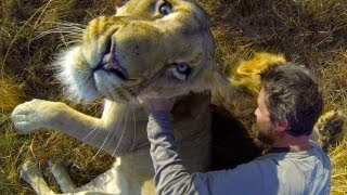 GoPro: Lion Hug - YouTube