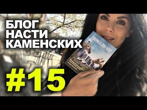 Блог Насти Каменских - Выпуск 15 - DomaVideo.Ru