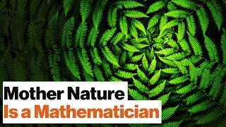 Universal Mathematics: All Life on Earth Is Bound by One Spooky Algorithm by Big Think
