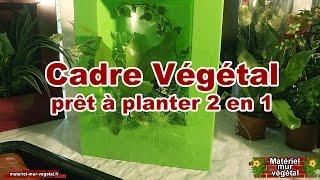 Cadre Végétal prêt à planter 2en1