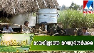 Maraiyur India  City pictures : Jaggery and sugar cane from Marayoor | Nattupacha 15-10-2016 | Manorama News