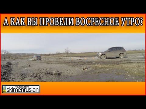 А как вы провели воскресное утро - DomaVideo.Ru