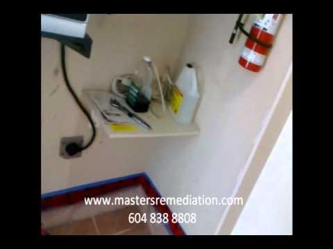 Vancouver Water Damage Restoration: Hardwood Floor Repair 1
