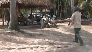 Phượt Phú Quốc : Đi Câu Mực