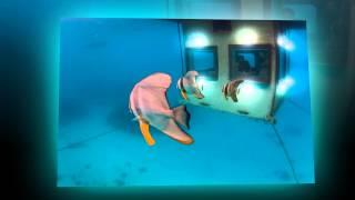 Подводный отель Manta Underwater Room