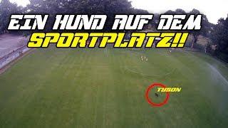 Heute mal mit Tyson auf dem Sportplatz unseres Vereins,dazu noch ein cooler Drohnenflug über unsere Knippertzbach Arena !! ;DLasst dafür mal 1000 LIKES da Freunde ! Würde mich Freuen =)----------------------------------------------------------------------------------------------------------Mein Shop: https://3dsupply.de/de/peterle/-------------------------------------------------------------------------------------------------------►Social Media:Snapchat: petersweltTwitter : http://bit.ly/20WUw8E Twitch: http://bit.ly/1QGYfCRFacebook: http://on.fb.me/1SwPjOPInstagram : http://bit.ly/1PKsMyOTeamspeak : ts.peterle.be-------------------------------------------------------------------------------------------------------►►►Equipment*Meine Kamera:http://amzn.to/17V7koB*Mein Monitor:http://amzn.to/1FdLM1s*Mein Micro:http://amzn.to/1KrzGZc*Meine Maus:http://amzn.to/1HcoRIN*Meine Tastatur:http://amzn.to/1bJWl2Y'Mein Headset:http://amzn.to/1KX3GsH*Lieblings Film:http://amzn.to/1cpcmfrBei den Oben genannten links * handelt es sich um sogenannte Affiliate-Links, kommen über solche Links Einkäufe zustande bekomme ich was an Provision. Aber es bleibt natürlich euch überlassen ob ihr was Kauft =)-----------------------------------------------------------------------------►►►Musik:Trayjack: https://soundcloud.com/trayjack/www.audionetwork.com