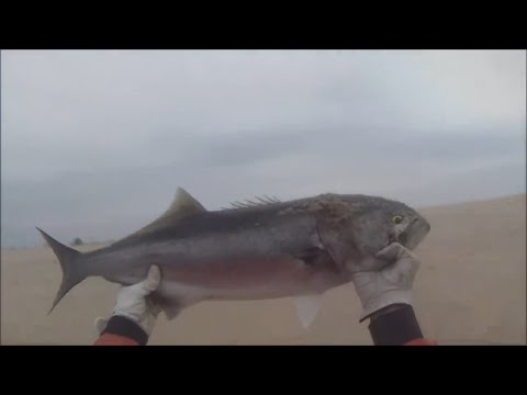 Surf Fishing Sandy Hook NJ – June 2014