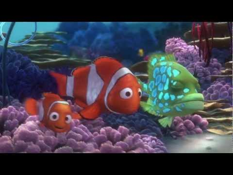Video of Nemo's Reef