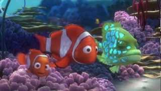Nemo's Reef YouTube video