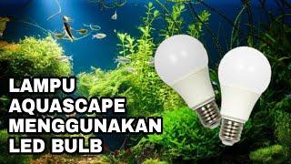 Video Membuat lampu aquascape mudah, murah, meriah MP3, 3GP, MP4, WEBM, AVI, FLV November 2018