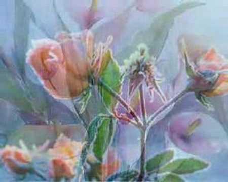 Reinaldo Armas - Pesadilla entre las Flores
