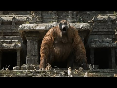 The Jungle Book (2016) Wrath of the King Lou