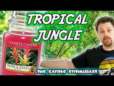 NEW - Yankee Candle - TROPICAL JUNGLE - JUST GO Collection - UK/EU Summer 2018 - Review Evaluation