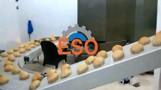 خط انتاج خبز عربي - عرض السير 60 سم - Arabic (Pita Bread) bread production line