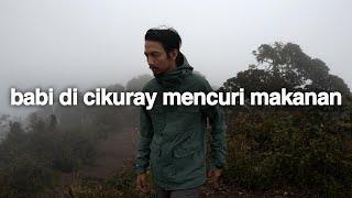 Video Ketidakterdugaan (Gunung Cikuray, Jawa Barat) MP3, 3GP, MP4, WEBM, AVI, FLV April 2019