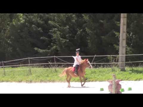 Fête du club de Chartres Equitation - Concours de déguisement