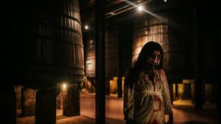 Ya puedes ver lo que fue el Hallo Wine 2016 de Bodegas Franco Españolas