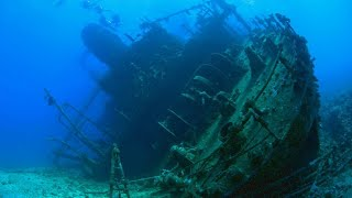 Video Divers Find A Tube On An Ancient Shipwreck With Contents That Shouldn't Even Be Possible MP3, 3GP, MP4, WEBM, AVI, FLV November 2018
