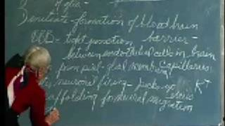 Integrative Biology 131 - Lecture 23: Neurohistology,...