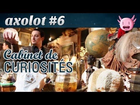 Axolot #6 : Cabinet de curiosités