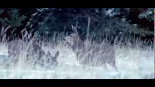 Nonton                           Angels Crest Dvd Trailer Greek Film Subtitle Indonesia Streaming Movie Download