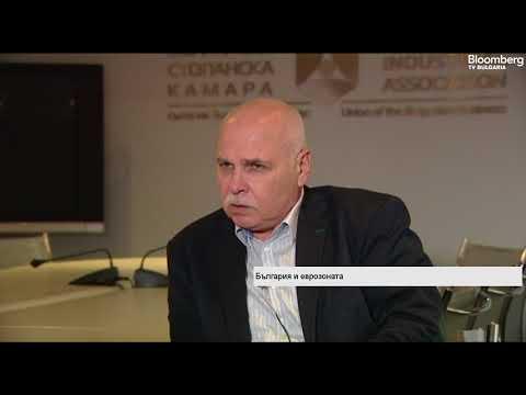 Д. Бранков: Сега е най-благоприятният момент за кандидатстване за ERM II