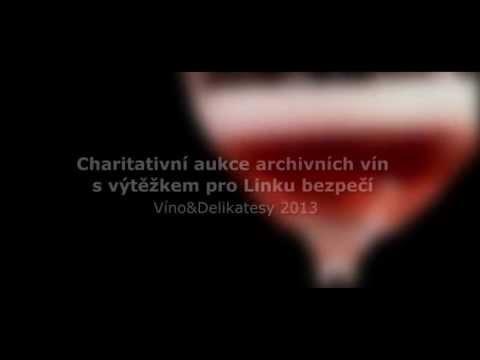 TV Gastro&Hotel: Charitativní aukce veletrhu Víno&Delikatesy 2013