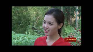 Tự Làm Bánh Cam - Vui Sống Mỗi Ngày [VTV3 - 10.06.2014]5