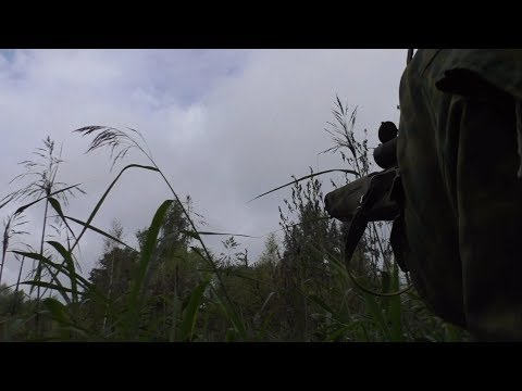 Охота Edgun Matador R3M (Hunting) (видео)