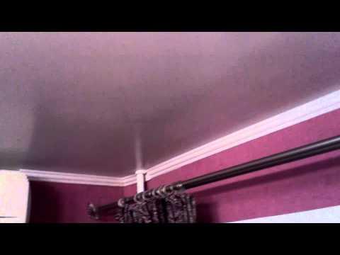 Мышь бегает по потолку.