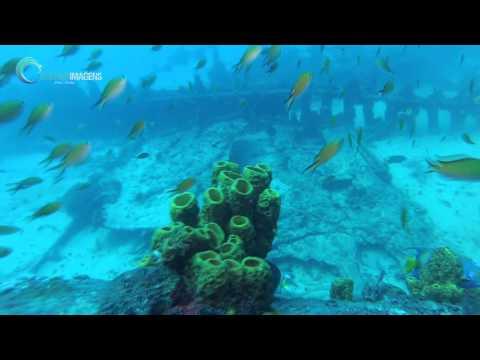 Mergulho Scuba Diving Naufrágio são luis - Rio do Fogo - RN - Brazil