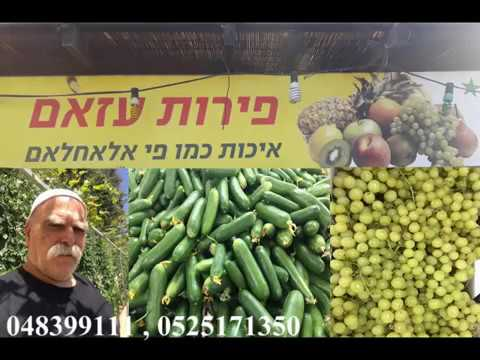 מבצעי החג בשוק אבו נסים חלדון עזאם עוספיה