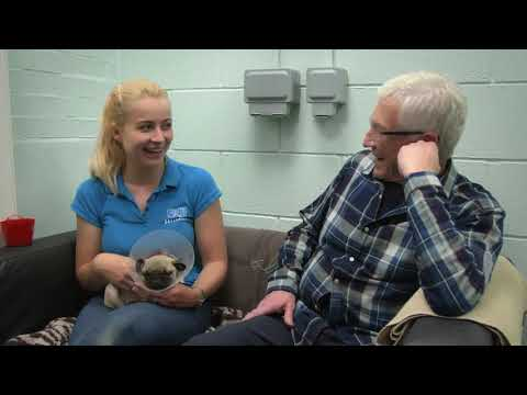 Paul O'Grady: For the Love of Dogs | Episode 4 | Clip
