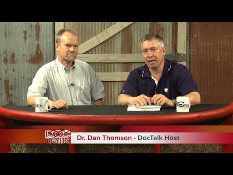 DocTalk: BVD consult