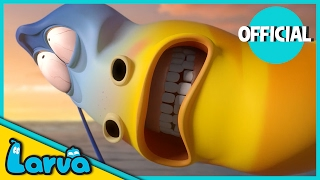 Larva brings you the best of the Larva Episodes for week 8 of 2017. Tune in and join red and yellow on their wild adventures. ⏩⏩⏩ SUBSCRIBE to LARVA: http://...