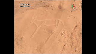 L'art rupestre saharien   Vestiges et Patrimoine