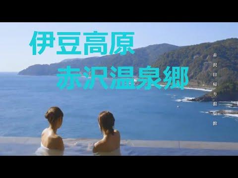 静岡 伊豆 DHC赤沢温泉ホテル
