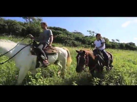 Horseback Riding at Gunstock Ranch - Oahu, Hawaii