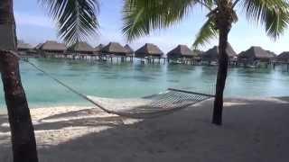 Moorea Island French Polynesia  city photo : Hilton Moorea Lagoon Resort & Spa, Moorea, French Polynesia