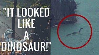 Video True Dinosaur Sightings From Across The World!  (Did They Really Go Extinct?) MP3, 3GP, MP4, WEBM, AVI, FLV Juli 2018