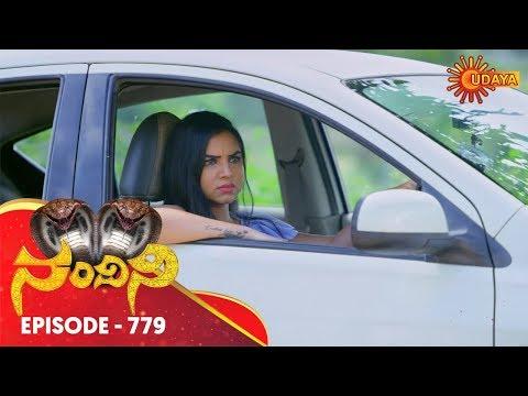 Nandini - Episode 779   28th Oct 19   Udaya TV Serial   Kannada Serial