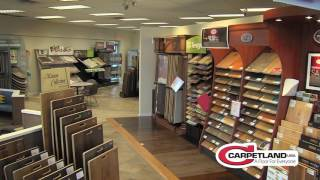 Working with Carpetland USA: A Customer's Point of View
