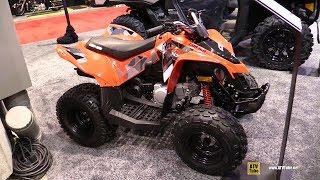 7. 2019 Can Am DS 90 ATV - Walkaround - 2019 Quebec Motorcycle Show